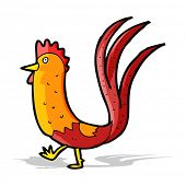 image of cockerels  - cartoon cockerel - JPG