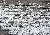 stock photo of storms  - Hail on the Roof - JPG