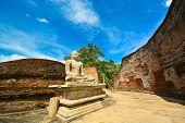 stock photo of polonnaruwa  - Historical Polonnaruwa capital city ruins in Srilanka - JPG