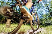 stock photo of riding-crop  - Young woman on mountain bike fast ride outdoors - JPG