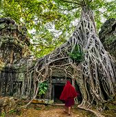Buddhist Monks At Angkor Wat. Ancient Khmer Architecture, Ta Prohm Temple Ruins Hidden In Jungles