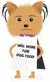 image of emaciated  - Funny hungry and homeless dog holding a sign - JPG