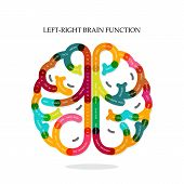 Creative Brain Function
