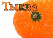 Pumpkin Orange, Inscription In Russian Pumpkin