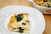 Baked Cheesy Spinach Lasagna With Cream Sauce