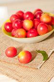 Cherry-plums