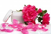 Open jar with the cosmetic cream and rose petals isolated on white