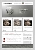 vector  template   business website