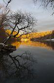 Van Cortlandt Park At Daylight