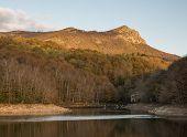 Panta De Santa Fe In Montseny Nature Park