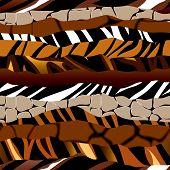 Striped pattern of fells