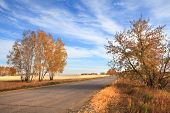 Road to the fields. Autumn landscape