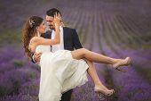 stock photo of lavender field  - A young couple in love - JPG