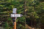 Trekking Signposts