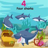 Illustrator of number four sharks