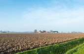 Dutch Polder Landscape In Afternoon Sunlight