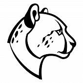 Cheetah Head