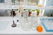 Test Tubes And Flasks In The Chemical Laboratory