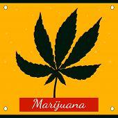 Hemp green leaf on a yellow background with the words marijuana.