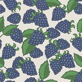 Doodle Blackberries Seamless Pattern