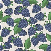 Doodle Blackberries Seamless Pattern