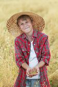 pic of oats  - Portrait of smiling teenage farm boy is checking golden beige oat seeds in cupped palms at harvest time field  - JPG