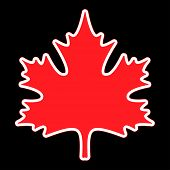 image of canada maple leaf  - stylized red maple leaf with white and red contour on a black background - JPG