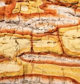 stock photo of lichenes  - lanzarote spain abstract texture of a broke stone and lichens - JPG