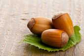 picture of hazelnut  - Heap of organic hazelnuts on hazelnut leaf over wood background  - JPG