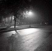 Постер, плакат: Фото фонарь и теней в тумане черный и белый