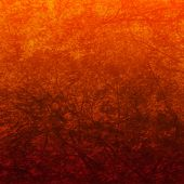 Orange foliage background