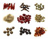 a little bit of super macro spices series - bird eye chilli pepper, cloves, green peppercorns, celeric salt, pomegranate, white coriander, allspice, juniper berries, red hot chilli pepper