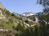image of snowbird  - Sugarloaf seen from the Chips Run trail at Snowbird ski resort Salt Lake City Utah - JPG