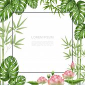 Realistic Beautiful Tropical Plants Template With Frame For Text Bamboo Stems Monstera Palm Leaves L poster