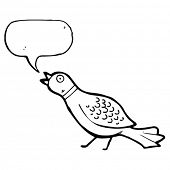 squawking pheasant cartoon