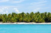Caribbean island with a nice beach and green palms. The picture of the beach is taken from a boat on