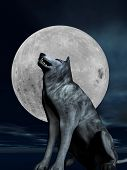 stock photo of wolverine  - A lone wolf barks in front of a full moon - JPG