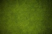 Texture Of Green Grass. Green Soccer Grass Background poster