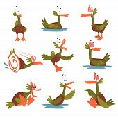 Funny Male Mallard Duck Set, Comical Bird Cartoon Character In Different Situations Vector Illustrat poster