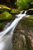 Cascada de Caney Creek Falls en Alabama