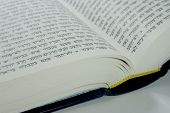 Modern Hebrew Bible