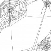stock photo of spiderwebs  - spider web on white background - JPG