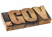 dot gov internet domain  - network address  for government- isolated text in vintage letterpress wood type