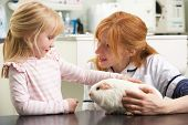 picture of veterinary surgery  - Female Veterinary Surgeon Examining Child - JPG