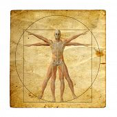 Concept or conceptual vitruvian human body drawing on old paper or book background as metaphor to anatomy,biology,classic,anatomical,circle,symbol,revival,proportion, skeleton or manuscript