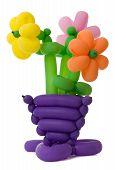 Ballon Flowers