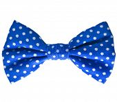 Blue bow close up on white isolated on white background