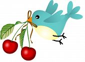 Bird with cherries