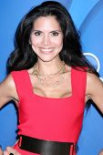 LOS ANGELES - JUL 27:  Joyce Giraud at the NBC TCA Summer Press Tour 2013 at the Beverly Hilton Hote