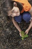 stock photo of locust  - Elevated portrait view of a smiling girl planting black locust tree - JPG